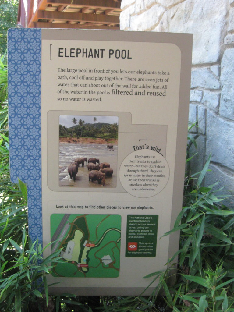 National_Zoo_Washington_DC_Elephant_Pool
