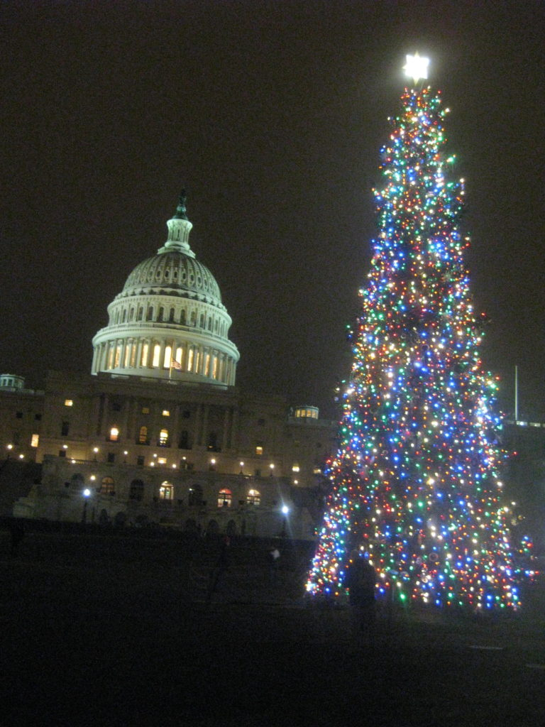 US_Capitol_Christmas_Tree_2018