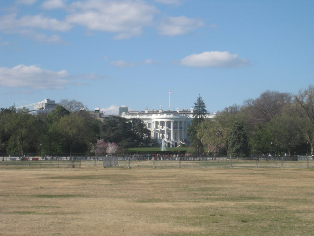 white house washington dc 2019 1024x768 - Washington D.C. and Cherry Blossoms 2019
