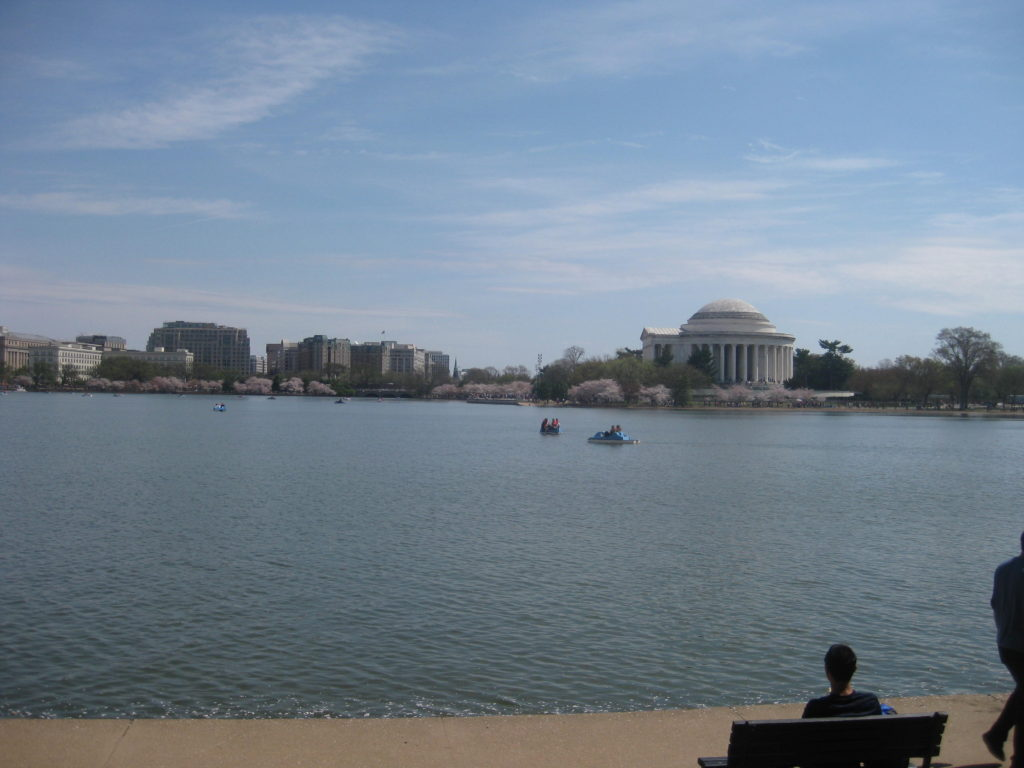 cherry blossom tidal basin jefferson memorial 1024x768 - Washington D.C., Cherry Blossoms, and National Museum of African Art April 2019