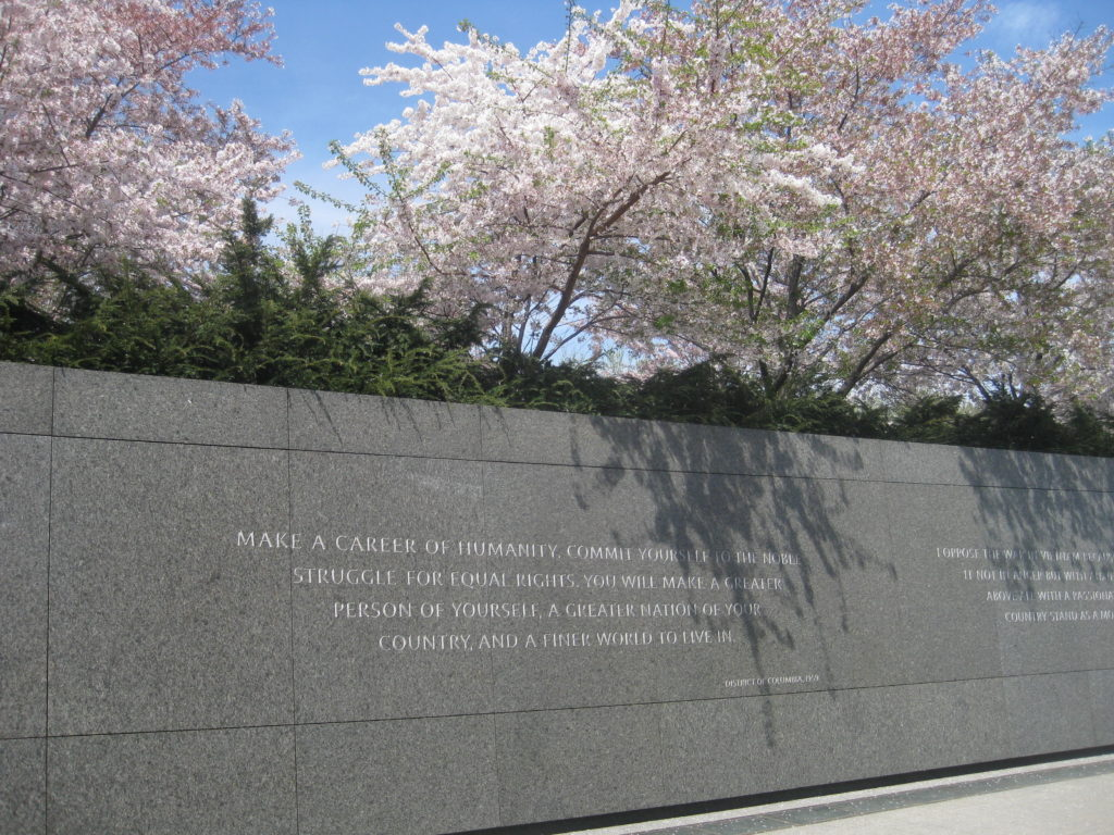 martin luther king memorial wall cherry blossom 1024x768 - Washington D.C., Cherry Blossoms, and National Museum of African Art April 2019