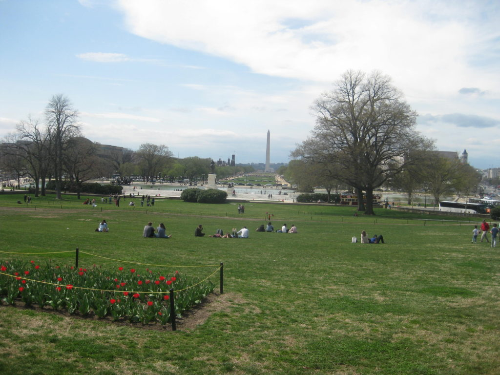 national mall capital view washington 1024x768 - Washington D.C., Cherry Blossoms, and National Museum of African Art April 2019