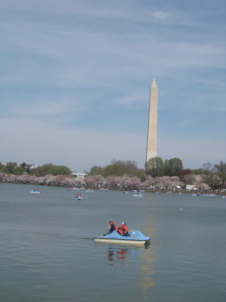 white house washington monument tidal basin e1554677816881 768x1024 - Washington D.C., Cherry Blossoms, and National Museum of African Art April 2019